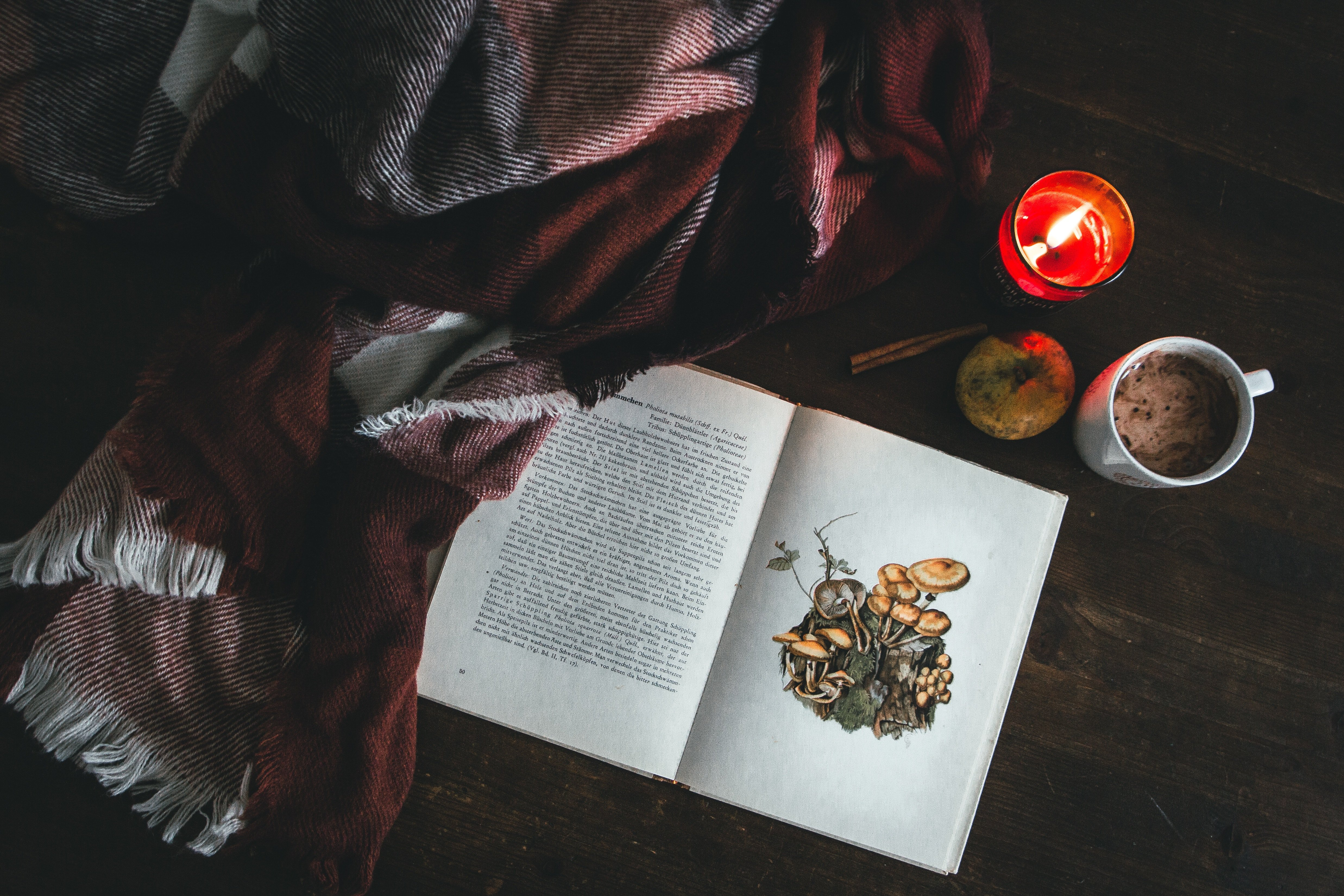 How To Focus Better While Reading